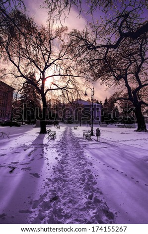 winter park landscape with purple sunset and pathway in the snow