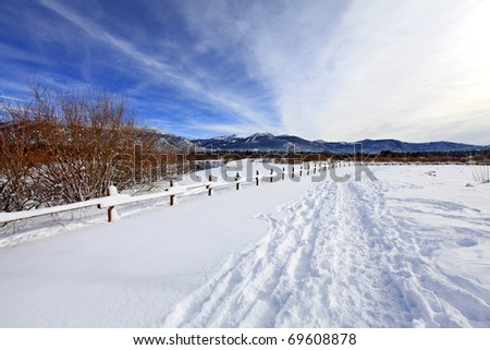 Winter park with trail near lake Tahoe - stock photo