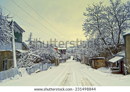 Winter path with frozen trees - stock photo