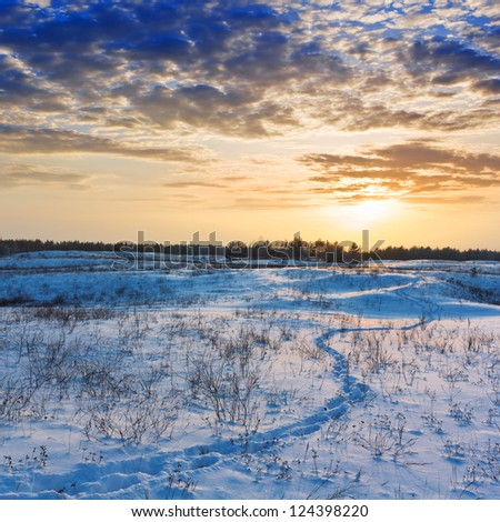 winter plain at the sunset - stock photo
