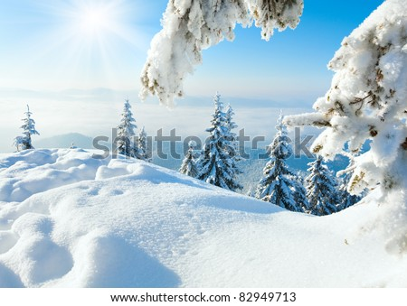 Winter rime and snow covered fir trees on mountainside - stock photo
