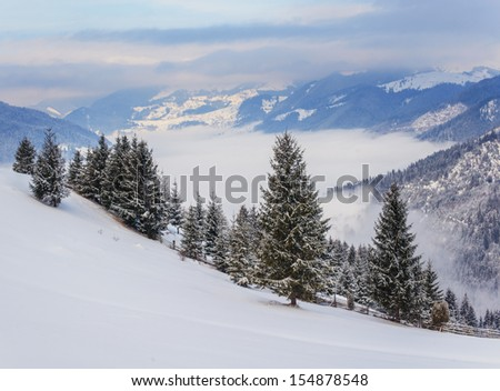 Winter rime and snow covered landscape with Goverla Mount view (Carpathian Mountains, Ukraine).