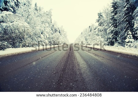 Winter road and forest  - stock photo