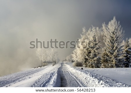 Winter road in mist - stock photo