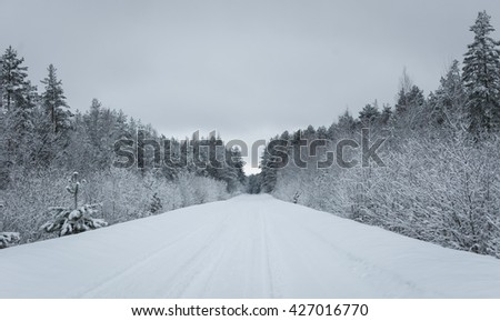 Winter road stretches into the distance and the snow-covered forest - stock photo