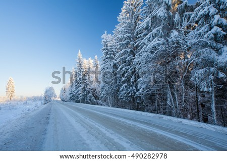 Winter road through snowy fields and forest