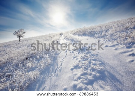 winter road to a sun - stock photo