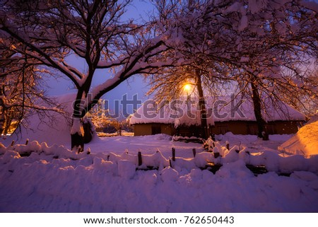Winter rural landscape at night. Trees in snow after blizzard