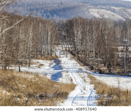 Winter rural landscape. Snow-covered road leaving in a birch forest.
