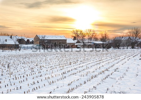 Winter's Tale. Winter landscape with snowy countryside village next to cornfield covered in white snow cover at sunset or sunrise. Rural home in winter time. - stock photo