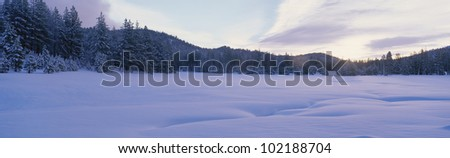 Winter scene, Nevada