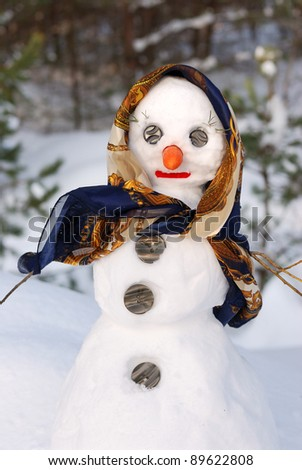 Winter scene with  snow woman on  forest background - stock photo