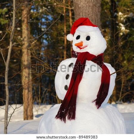 Winter scene with  snowman on  forest background - stock photo