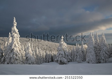 Winter scenery on the background of dark clouds. - stock photo