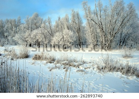 Winter Siberian city park, Omsk region