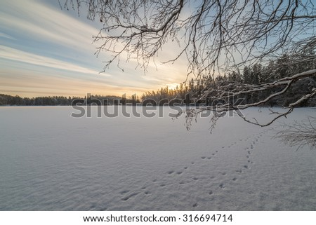 Winter snow-covered lake. Landscape - stock photo