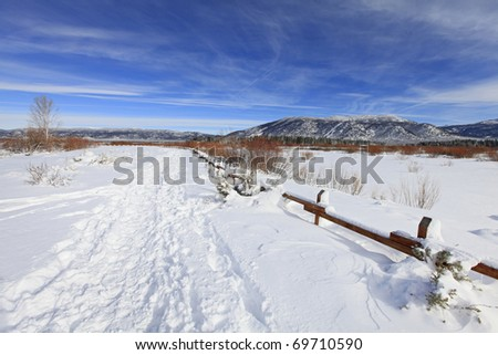 Winter snow day in the park near lake Tahoe - stock photo
