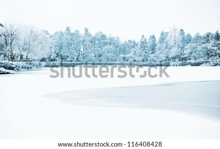 Winter, snow scene,Frozen lake, Famous scenic area, the Mount Lu of China - stock photo