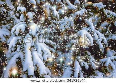Winter snow scene with magic light - stock photo