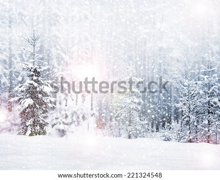 Winter. Snowfall. - stock photo