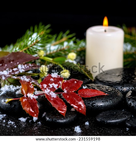 winter spa concept of evergreen branches, red leaves with drops, snow,  candle on zen basalt stones, closeup   - stock photo