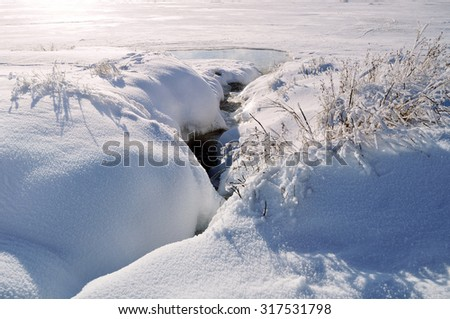 Winter sunny landscape with the stream and frozen plants - focus at the frozen plants  - stock photo