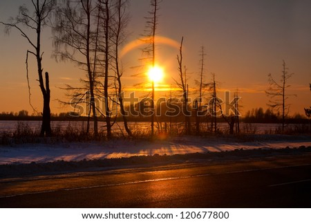 Winter sunset in forest in cold evening