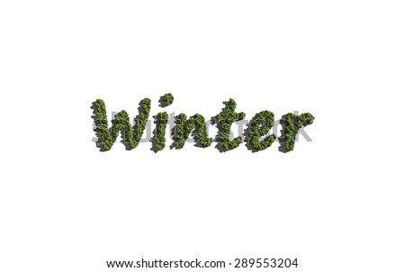 winter text tree with white background concept of typography - stock photo