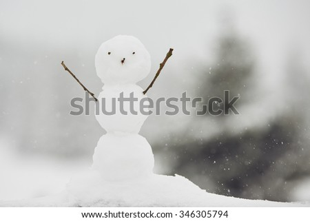 Winter time - snowman in nature in cold day - stock photo