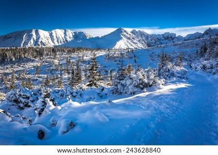 Winter trail on the mountain peak - stock photo