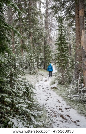 Winter trail with a man walking through a forest