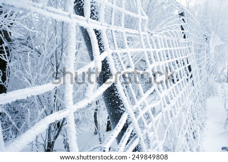Winter trees and fence in the frost and fog - stock photo