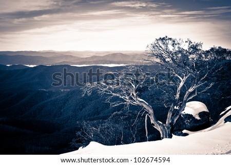 Winter view from Mt Wills, Victoria, Australia - stock photo