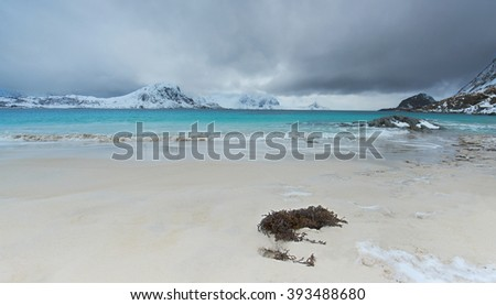 Winter view to beautiful Haukland Beach on Lofoten islands in the sunset - Norway