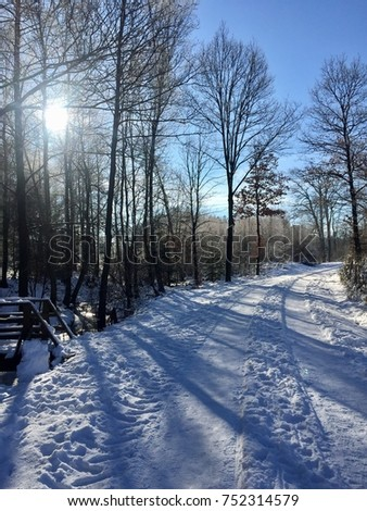 Winter walk on a sunny winter day: Beautiful snow covered landscape with trees and blue sky