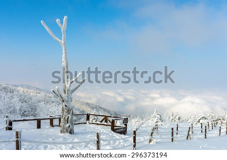 winter white snow morning over. background with Sea fog is the most beautiful landscape,Sobaeksan Mountain in Korea - stock photo