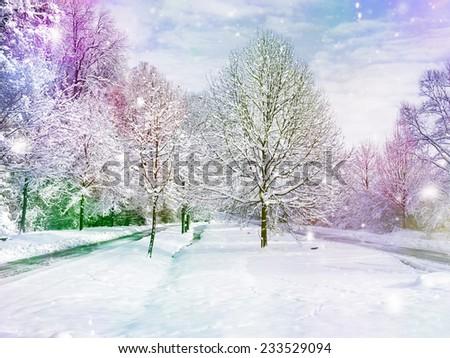 winter wonder land - color design - stock photo