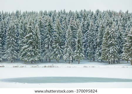 Winter wonderland. Spruce tree forest covered with snow and frozen lake. - stock photo