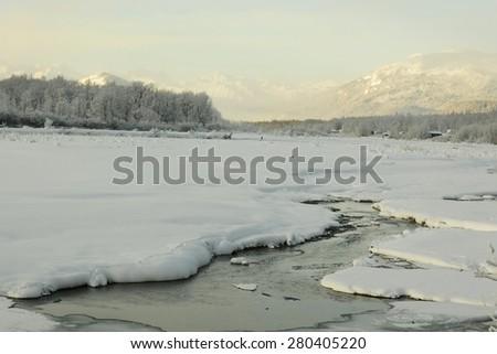 Wintering Chilkat Valley. Alaska. - stock photo