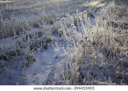 Winterly landscape with hoarfrost on the trees and grass, the view to and from the observation tower, hogs tower
