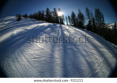 Wintery skiing goodness. Slope with adjacent trees and slanting sun, casting large shadows. - stock photo