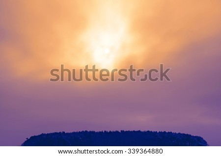 Wintry-forest with a dramatic evening-sky before snowfall - stock photo