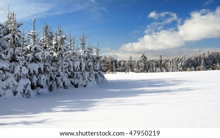 wintry landscape scenery with flat county and woods