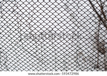 Wire Mesh Steel On White Background Stock Photo (Edit Now)- Shutterstock