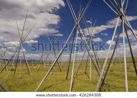 WISDOM, MONTANA, USA - CIRCA AUGUST 2004: Nez Perce Indian camp site tipi poles, at Big Hole National Battlefield, which memorializes Battle of Big Hole 1877. - stock photo