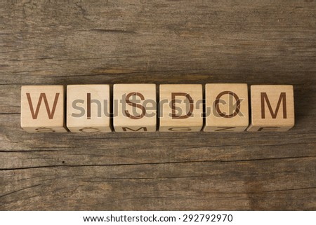 wisdom word on wooden cubes - stock photo