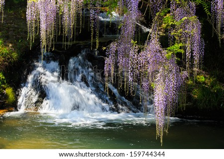 Wisteria trellis and Waterfall. Great views of Japan - stock photo