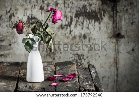 Withered roses in vase on old wooden - stock photo