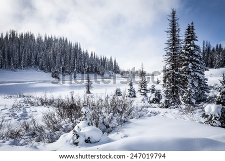 Wolf Creek Pass Mountain Summit in Snowy Colorado Winter - stock photo