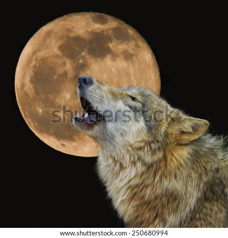 Wolf Howling at the Moon - stock photo